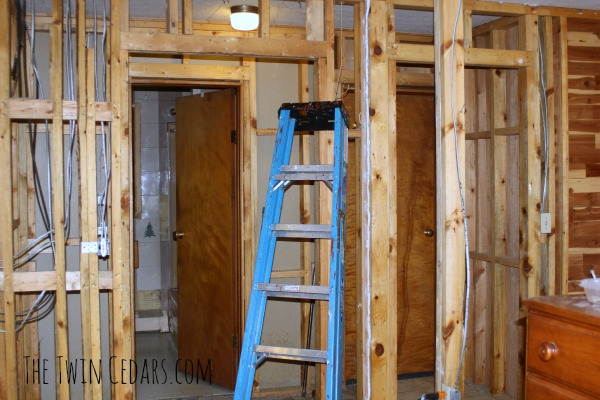 Not just another diy bathroom renovation the twin cedars for Diy bathroom demolition