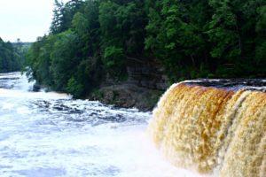 Twin Cedars goes field trippin': Tahquamenon Falls