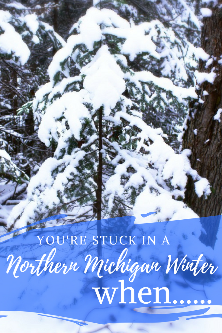 You know you're stuck in a Northern Michigan Winter when...